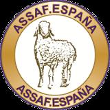 ASSAF.E