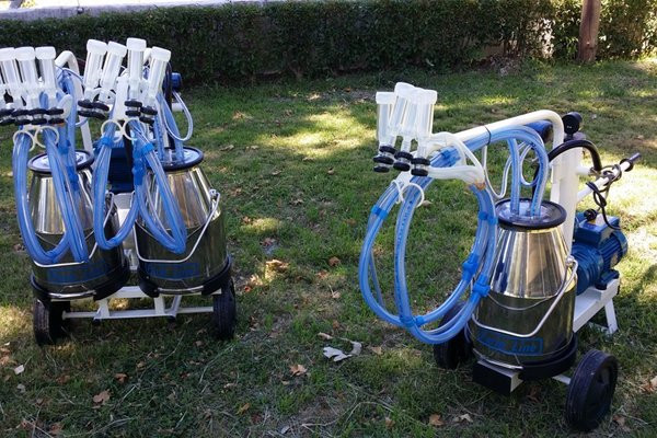 Milking Trolleys for Sheep and Goats