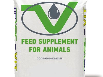 Feed Supplements for Sheep Cows